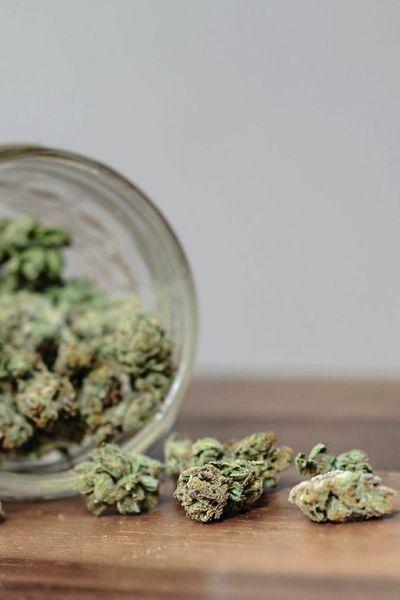 Herb background