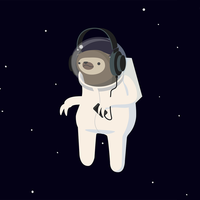 Sloth in space