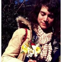 Lnzflowers