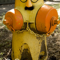 Hydrant groucho
