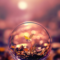 Beautiful macro photography plant water bubble iphone 5 wallpaper